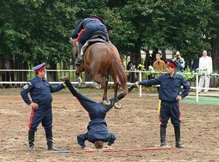 Конь прыгает через мента