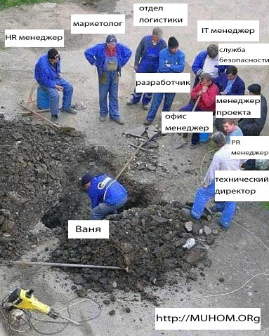 компанда IT разработчиков