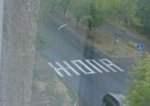 Дорожная жопа