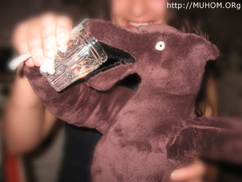 Медвед бухает