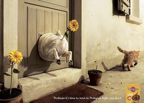 Креативная реклама от Pedigree
