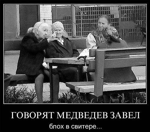 Демотриватор: Говорят Медведев завёл блох в свитере...
